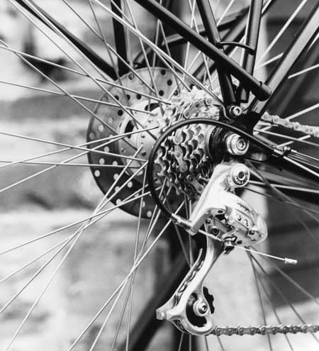 campag001cropped450px.jpg